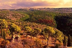 Day tour Israel - mazada tours