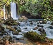Banias-waterfall-stream-Mazada Tours