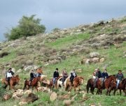 Horse-riding-in-the-golan-heights-Mazada Tours