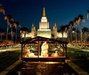 nativity-scene-at-night-palm-trees - Mazada Tours