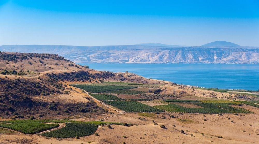 Golan Heights Tour