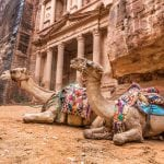 two-bedouin-camels-Mazada Tours