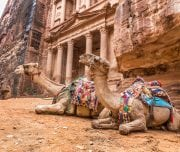 Two-bedouin-camels-rests-near-the-treasury-Al-Khazneh-carved-into-the-rock-at-Petra