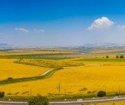 farming-fields-in-megiddo-valley-Mazada Tours