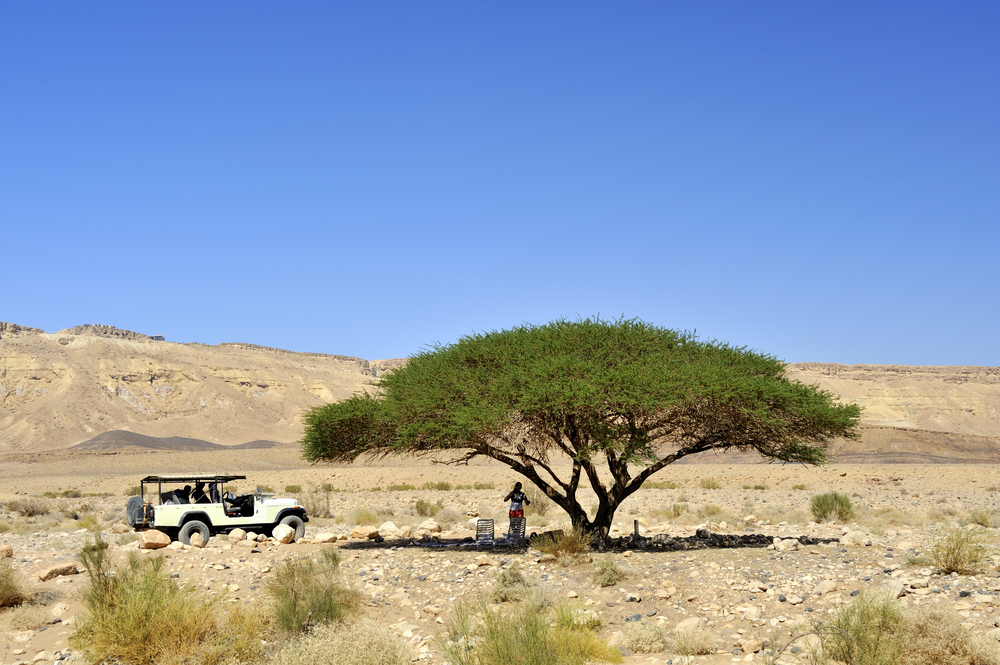 things to do in eilat_jeep safari