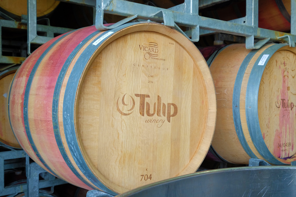 israel wine tour_tulip winery